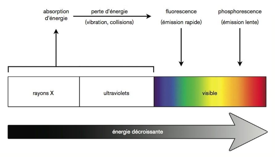 3-La phosphorescence - TPE Luminescence