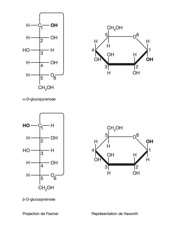 L Glucopyranose Représentation de...